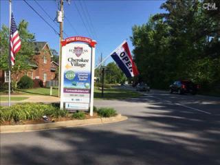 213  Cherokee Pond Court  66, Lexington, SC 29072 (MLS #376832) :: Exit Real Estate Consultants