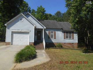 717  Riverwalk Way  , Irmo, SC 29063 (MLS #377478) :: Exit Real Estate Consultants