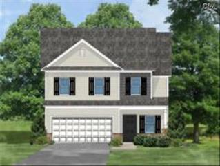 521  Colony Lakes Drive  Lot 45, Lexington, SC 29073 (MLS #377523) :: Exit Real Estate Consultants
