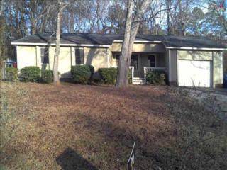 201  Brickling Road  , Irmo, SC 29063 (MLS #377683) :: Exit Real Estate Consultants