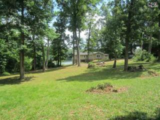267  Killian Point  , Chapin, SC 29036 (MLS #377981) :: Exit Real Estate Consultants