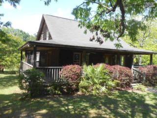 213  Olin Slice Road  , Chapin, SC 29036 (MLS #378018) :: Exit Real Estate Consultants