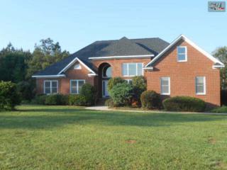 4097  Hughey Ferry Road  , Pomaria, SC 29126 (MLS #378162) :: Exit Real Estate Consultants