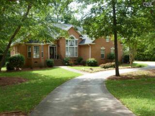 219  Sunningdale Drive  , Lexington, SC 29072 (MLS #378285) :: Exit Real Estate Consultants