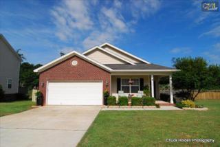 269  Farming Creek Way  , Lexington, SC 29072 (MLS #378335) :: Exit Real Estate Consultants