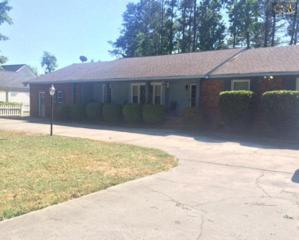 2845  Chatsworth Road  , Columbia, SC 29223 (MLS #378352) :: Exit Real Estate Consultants