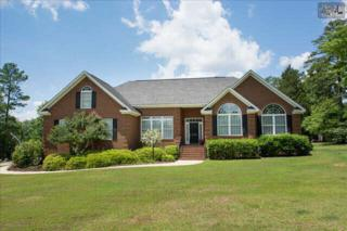 1308  Marina Road  , Irmo, SC 29063 (MLS #378423) :: Exit Real Estate Consultants