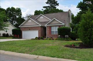 224  Gleneagle Circle  , Irmo, SC 29063 (MLS #378437) :: Exit Real Estate Consultants