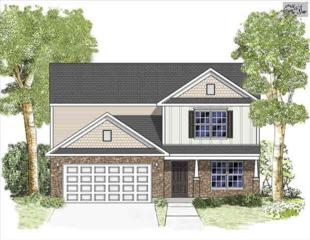 936  Picotee Court  0016, Blythewood, SC 29016 (MLS #378479) :: Exit Real Estate Consultants