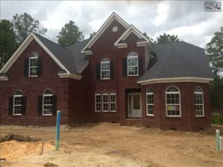 250  Palm Sedge Loop  1, Elgin, SC 29045 (MLS #378572) :: Exit Real Estate Consultants