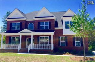 423  Knollside Drive  , Blythewood, SC 29016 (MLS #378579) :: Exit Real Estate Consultants