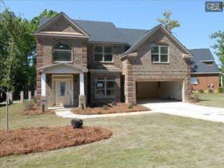 356  View Drive  57, Blythewood, SC 29016 (MLS #378581) :: Exit Real Estate Consultants