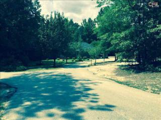 4209  Hard Scrabble Road  , Columbia, SC 29223 (MLS #378672) :: Exit Real Estate Consultants