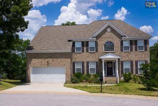33  Deer Stream Court  , Blythewood, SC 29016 (MLS #378677) :: Exit Real Estate Consultants