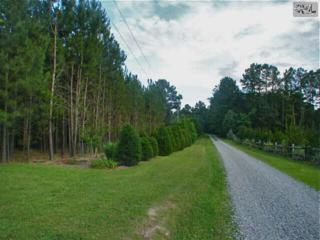 121  Pamela Court  , Chapin, SC 29036 (MLS #378697) :: Exit Real Estate Consultants