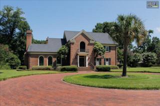 2635  Mineral Springs Road  , Lexington, SC 29072 (MLS #335924) :: Exit Real Estate Consultants