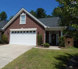 164  Marissa Lane  , Lexington, SC 29072 (MLS #348154) :: Exit Real Estate Consultants
