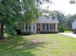 440  Heartwood Drive  , Lexington, SC 29073 (MLS #354786) :: Exit Real Estate Consultants