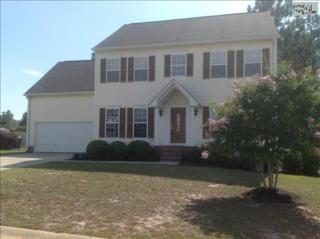300  Ridgehill Drive  , Lexington, SC 29073 (MLS #359676) :: Exit Real Estate Consultants