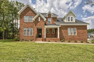 225  Scarborough Way  Lot 48, Lexington, SC 29072 (MLS #360670) :: Exit Real Estate Consultants