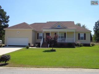 118  Tar Box Trail  , Lexington, SC 29073 (MLS #361819) :: Exit Real Estate Consultants