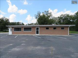 231 E Columbia Avenue  , Leesville, SC 29070 (MLS #363421) :: Exit Real Estate Consultants