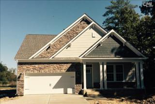 45  Downing Circle  38, Gilbert, SC 29054 (MLS #363479) :: Exit Real Estate Consultants