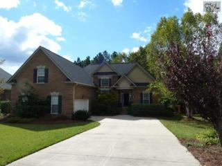 12  Hilton Glen Court  , Chapin, SC 29036 (MLS #364560) :: Exit Real Estate Consultants