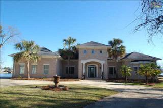25  Sunrise Point  , Irmo, SC 29063 (MLS #367524) :: Exit Real Estate Consultants