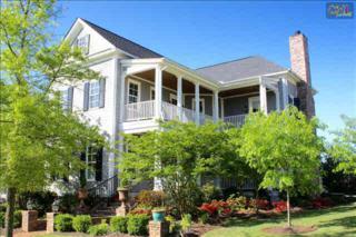 169  River Club Road  , Lexington, SC 29072 (MLS #367553) :: Exit Real Estate Consultants