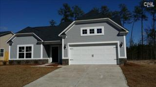524  Colony Lakes Drive  92, Lexington, SC 29073 (MLS #368003) :: Exit Real Estate Consultants