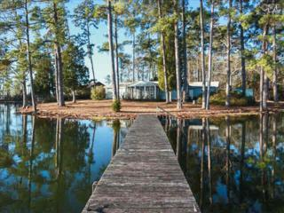 933  Bear Point  , Chapin, SC 29036 (MLS #369024) :: Exit Real Estate Consultants