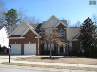 9  Austree Court  Lot 18, Columbia, SC 29229 (MLS #369434) :: Exit Real Estate Consultants