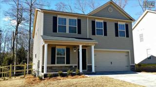 323  Colony Lakes Drive  Lot 2, Lexington, SC 29073 (MLS #369701) :: Exit Real Estate Consultants