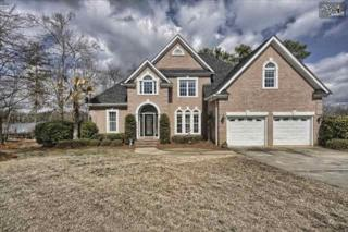 247  Edgewood Drive  , Chapin, SC 29036 (MLS #372260) :: Exit Real Estate Consultants