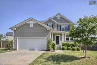 421  Settlers Trail  , Lexington, SC 29072 (MLS #372502) :: Exit Real Estate Consultants