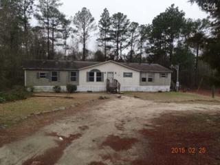 125  Carolyn Trail  , Gaston, SC 29053 (MLS #372605) :: Exit Real Estate Consultants