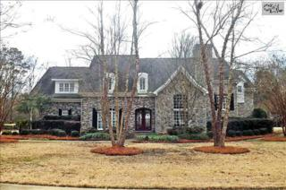 228  Treyburn Circle  , Irmo, SC 29063 (MLS #372905) :: Exit Real Estate Consultants