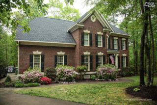101  Ashley Oaks Drive  , Blythewood, SC 29016 (MLS #375751) :: Exit Real Estate Consultants