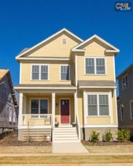367  River Club Road  , Lexington, SC 29072 (MLS #351156) :: Exit Real Estate Consultants