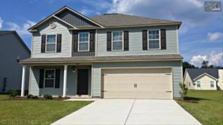 624  Colony Lakes Drive  62, Lexington, SC 29073 (MLS #356619) :: Exit Real Estate Consultants