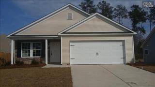 530  Colony Lakes Drive  93, Lexington, SC 29073 (MLS #366505) :: Exit Real Estate Consultants