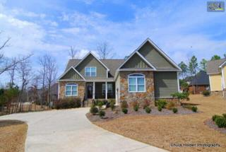 157  Blue Wing Drive  , Gilbert, SC 29054 (MLS #377865) :: Exit Real Estate Consultants