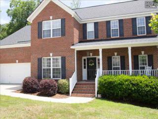 313  Southberry Way  , Lexington, SC 29072 (MLS #378263) :: Exit Real Estate Consultants