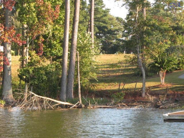310 Osprey Lake Drive - Photo 1