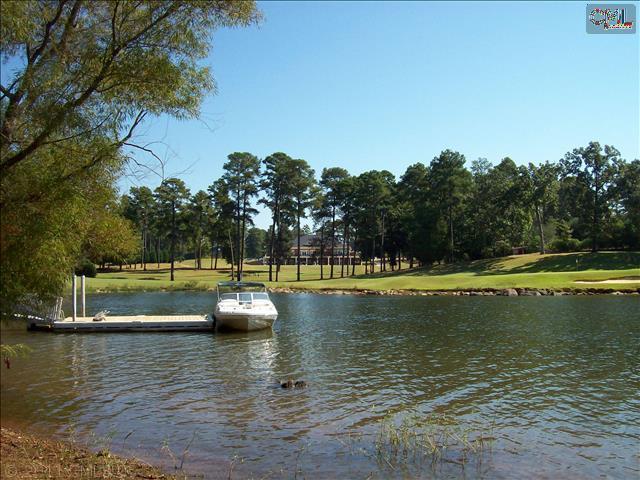 151 Water Links Drive - Photo 1