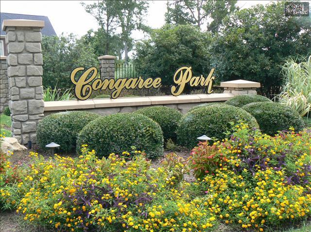 233 Congaree Park Drive - Photo 1