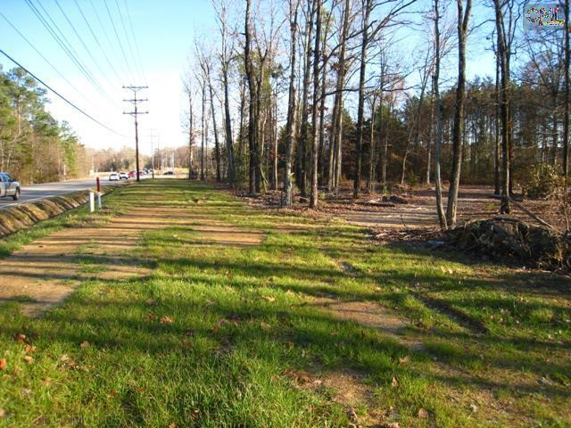 11601 Broad River Road - Photo 1