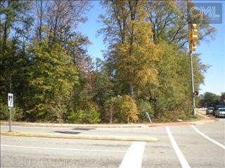 0 Piney Grove Road - Photo 1