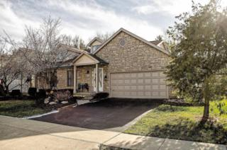 5673  Forest Grove Avenue  , Westerville, OH 43081 (MLS #215000713) :: The Raines Group